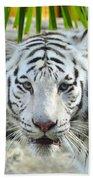 White Tiger Beach Sheet