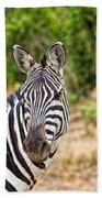 Zebras In The Masai Mara Beach Towel