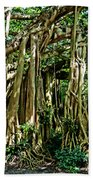 20120915-dsc09882 Beach Towel