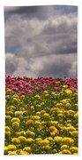 Flower Fields Beach Towel