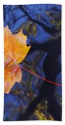 Autumn Leaf On The Water Beach Towel