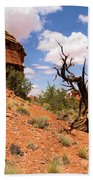 Canyonlands Needles District Beach Towel