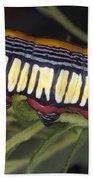 Caterpillar Beach Towel