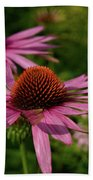 Eastern Purple Coneflower Beach Towel