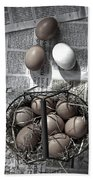 Eggs Beach Sheet
