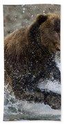 Grizzly Bear Ursus Arctos Horribilis Beach Towel