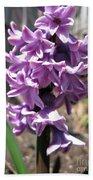 Hyacinth Named Splendid Cornelia Beach Towel