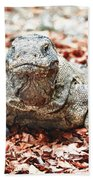 Komodo Dragon Beach Towel
