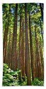 Multnomah Falls Oregon Beach Towel