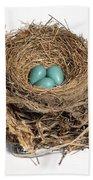Robins Nest With Eggs Beach Towel