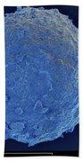 Sem Of Cretaceous-tertiary Kt Meteorite Beach Towel