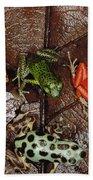 Strawberry Poison Dart Frog Dendrobates Beach Towel