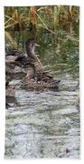 Teal Ducks Beach Towel