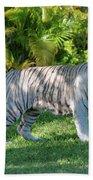 35- White Bengal Tiger Beach Towel