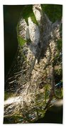 Bird-cherry Ermine Caterpillars Beach Towel