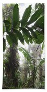 Bromeliad Bromeliaceae And Tree Fern Beach Towel by Cyril Ruoso
