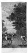 Cattle, 19th Century Beach Towel