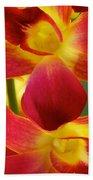 Dendribium Malone Or Hope Orchid Flower Beach Towel