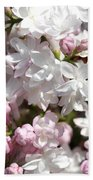 Lilac Named Beauty Of Moscow Beach Towel