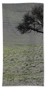 Lonely Tree Beach Towel