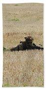 Belgian Paratroopers On Guard Beach Towel by Luc De Jaeger
