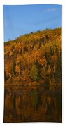 Fall Beauty Beach Towel