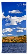Fall Forest And Lake Beach Towel by Elena Elisseeva