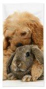 Puppy And Rabbit Beach Towel