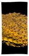 Usambara Eyelash Bush Viper Beach Towel