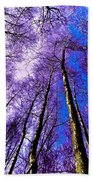 Epping Forest Trees Beach Towel
