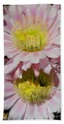 Pink Cactus Flowers Beach Sheet