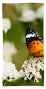 A Butterfly Affair Beach Towel