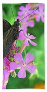 A Butterfly On The Pink Flower 2 Beach Towel