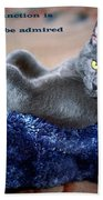 A Cats Function Beach Towel