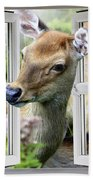 A Deer Enters The House Window. Beach Towel