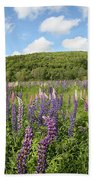 A Field Of Lupines Beach Towel