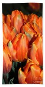 A Field Of Orange Tulips Beach Towel