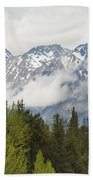 A Forest And The Rocky Mountains Beach Towel