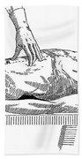 A Handbook Of Morbid Anatomy Beach Towel