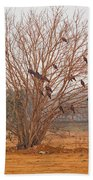 A Leafless Tree That Is Home To A Large Number Of Big Birds In The Middle Of A Ground Beach Towel