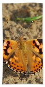 A Painted Lady Looking For Sex 8619 3369 Beach Towel