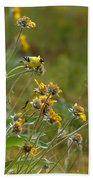 A Pair Of Goldfinches In Spokane Beach Towel