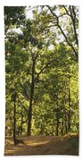 A Path Through A Sparse Forest And Trees Beach Towel