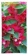 A Section Of Pink Bougainvillea Flowers Beach Towel