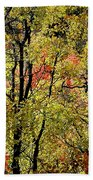 A Splash Of Fall Beach Towel