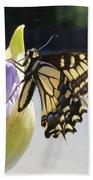 A Swallowtail Butterfly Beach Towel