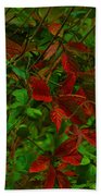A Touch Of Christmas In Nature Beach Towel