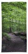 A Walk In The Catskills Beach Towel
