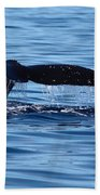 A Whale Of A Time Beach Towel