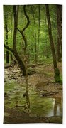 A Woodland Stream In Cades Cove No.472 Beach Towel